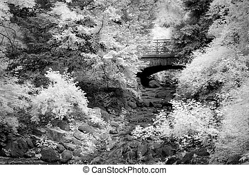 Infrared photo of a bridge