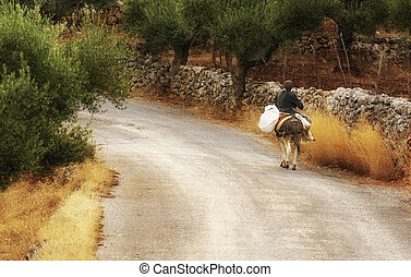 Living in Mani - An old lady riding a donkey along a country...