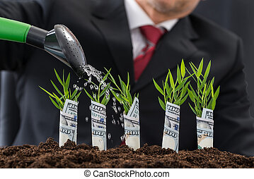 Businessman Watering Money Plants - Businessman Watering...