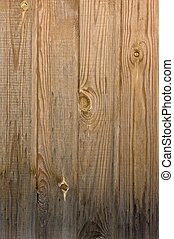 Pinewood texture - Texture of aged pinewood planks. Golden...