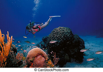 A scuba diving girl in a bikini poses above the coral reef...