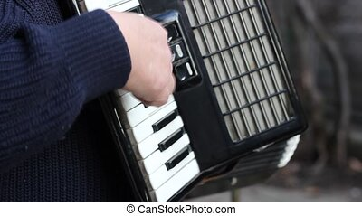Piano Accordion Musician - Player on piano accordion The...