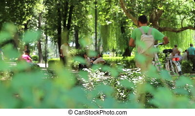 People in The Park - People walking relaxed in the park in a...