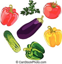 Set of vegetables on a white background vector.
