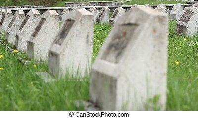 Red Army WWII Cemetery - Changing focus on WWII military war...