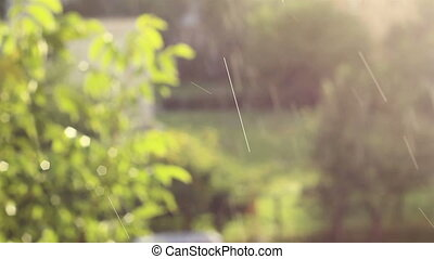 Raindrops and Sun Atmosphere - Raindrops mixed with soft...