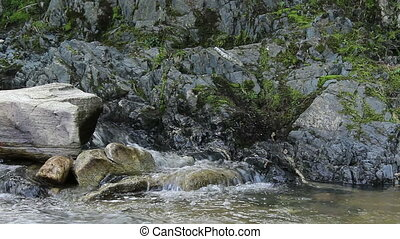 Rocks with Moss and Rapids - River flows swiftly through...