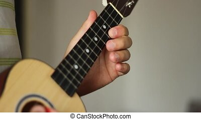 Ukulele Musical Instrument - Man is playing on ukulele The...