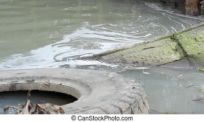 Water Polluted with Chemicals - Polluted foamy greenish...