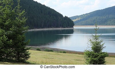 Water Dam Lake and Forest - A beautiful landscape with a...