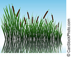 grass on water - Vector grass silhouettes back