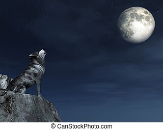chorando, Lobo
