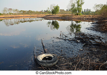 Effects Environmental from Water contaminated with Chemicals...