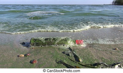 polluted sea bay green waves with algae and bottle on beach