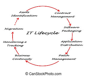 IT Lifecycle Management