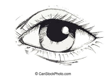 Eye - Hand drawn vector illustration or drawing of a human...