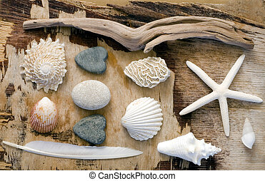 maritime Collage - Assortment of beach stuff