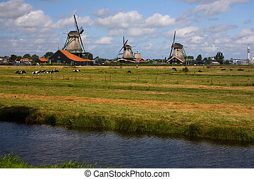 Windmills in Netherland - Netherlands - country of beautiful...