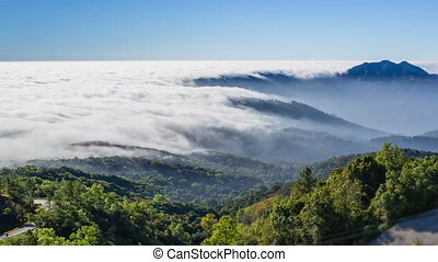 Beautiful Mist Flowing On Valley At Inthanon National Park...