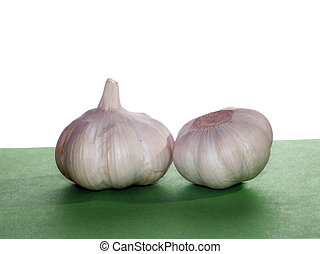 Garlic Allium sativum is an important fzser kitchen
