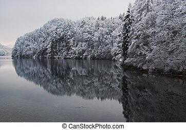 White Lake - Arboles nevados en un lago de Alemania.