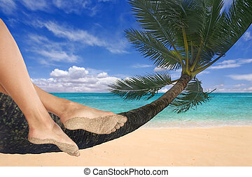 Girl Dangling Her Feet on a Palm Tree - Woman Dangling Her...