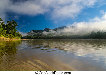 Bolivian jungle - Brown lake waters in bolivian jungle...