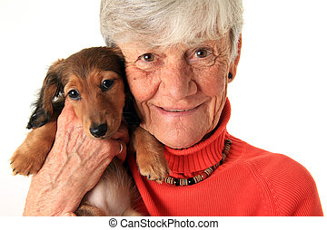 Woman and dachshund puppy - Senior woman holding her new...