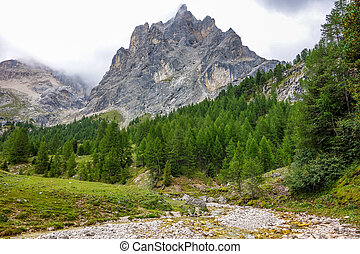 Dolomites 62 - Val di Contrin in the Dolomites mountains of...