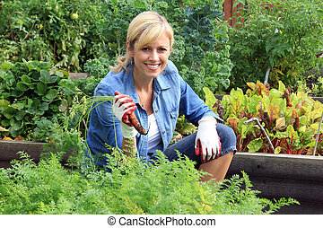 Woman vegetable garden - Woman in the vegetable garden,...