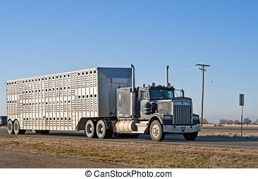 Stock truck from a local farm - Local farmer uses his own...