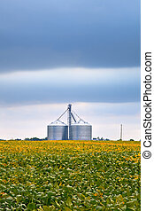 Agriculture industry with soybean fields and silo on cloudy...