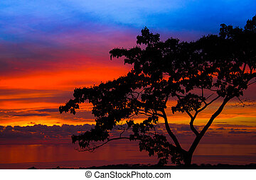 Sunset in Costa Rica on the ocean coast