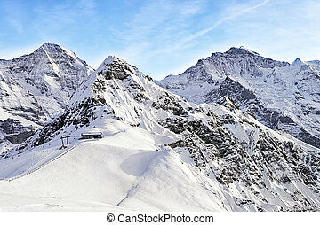 Jungfrau,  tschuggen,  monch, picchi, Alpino