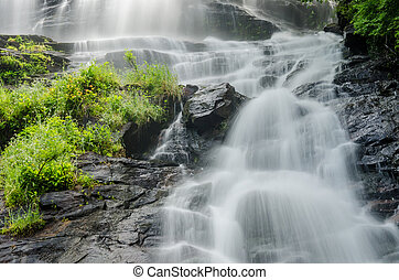 Amicalola Falls Looking Up