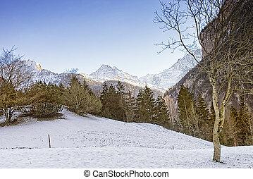 svizzero, Alpino, paesaggio, con, Eiger, Monch, e, Jungfrau,...