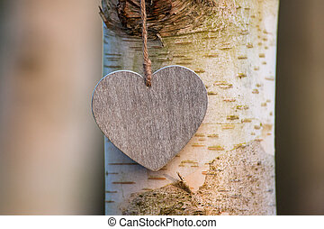 love heart tree trunk abstract - love heart tree trunk...