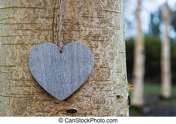 love heart tree trunk background texture