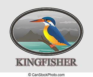 Kingfisher - An illustration of Kingfisher bird