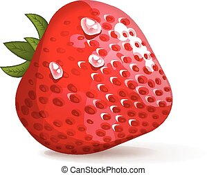 Strawberries vector illustration