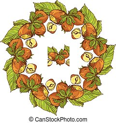 Circle ornament with highly detailed hand drawn hazelnuts...