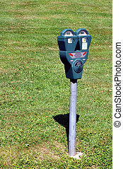 Parking meter with grass in the background