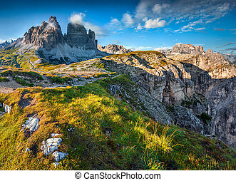 Colorful summer morning in the National Park Tre Cime di...