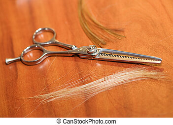 Haircutting Scissors