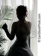 Silhouetted bride in veil