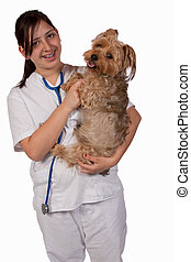 Animal Health Care Worker - Young hispanic girl in white...
