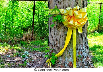 Yellow Ribbon tied around Tree - Yellow Ribbon tied around a...