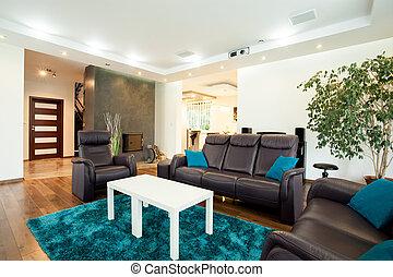Luxurious modern living room - Horizontal view of luxurious...