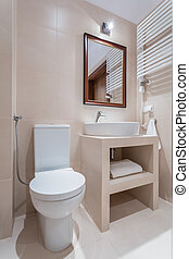 Elegant toilet in pastel colors - Vertical view of elegant...