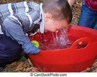 Little Boy Bobbing For Apples - This 5 year old little boy...